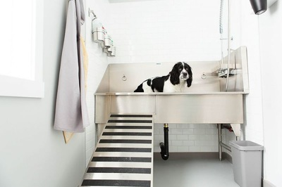 Ridalco Stainless Steel Dog Grooming Sink Ridalco
